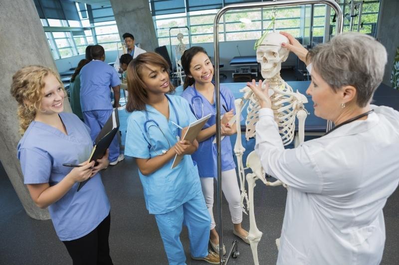 Nurses %28800x533%29